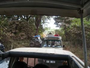 マニヤラ湖畔のサファリ。車はほとんどがランドクルーザー(の中古)。