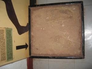 人類最古の足跡のレプリカ。ンゴロンゴロ国立公園入り口にて。