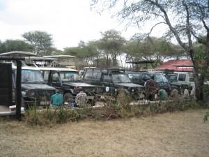 休憩所のサファリの車の列。