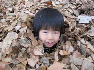 落ち葉に埋まって