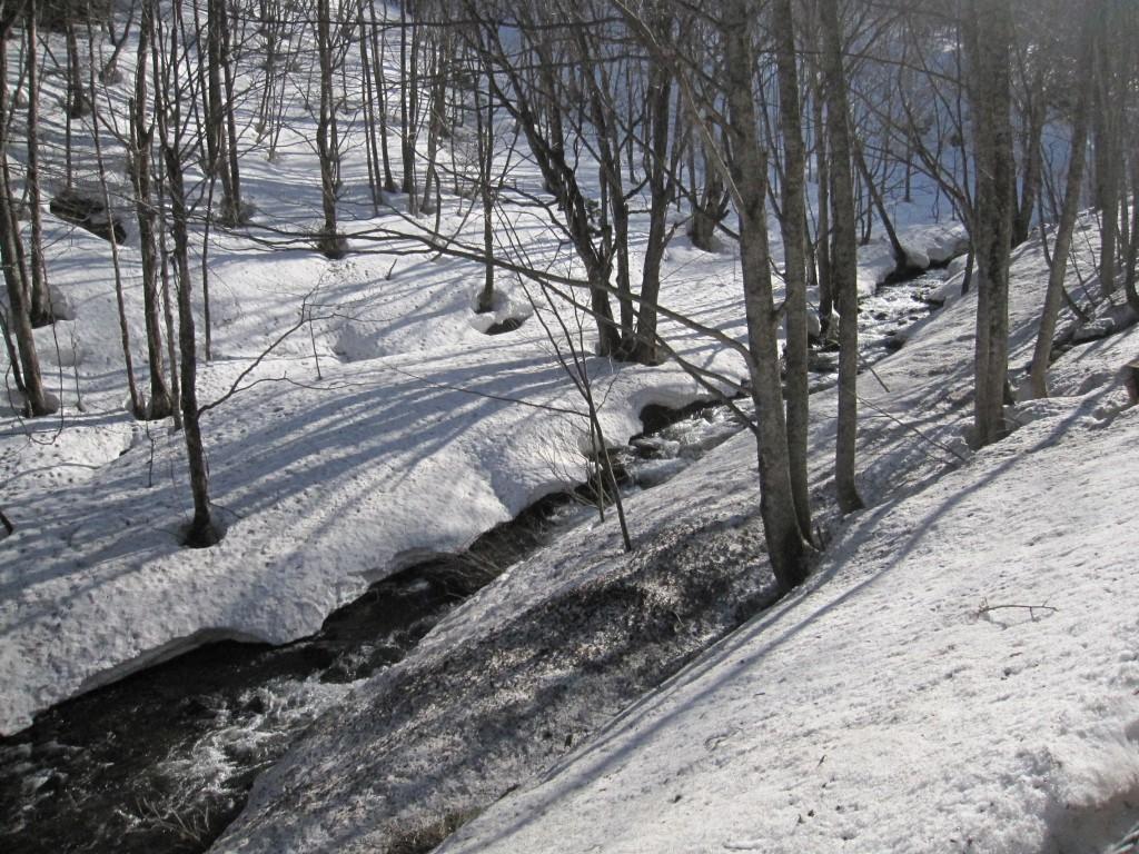 玉原スキー場へ向かう途中